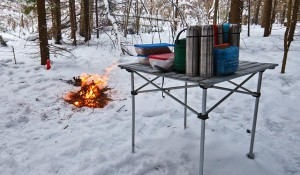 зимний пикник в лесу