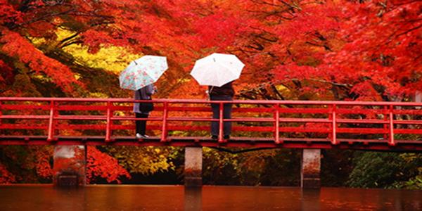 Японский праздник Момидзи