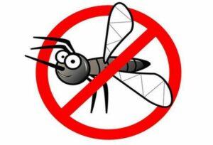 борьба с комарами на пикнике