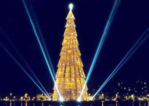 самая высокая елка в Бразилии