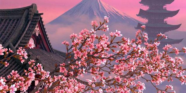 Фестиваль сливы в Японии