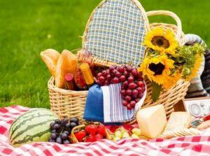 вегетарианский пикник