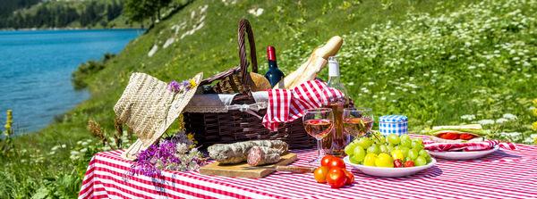 место проведения пикника