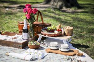 пикник для гурманов
